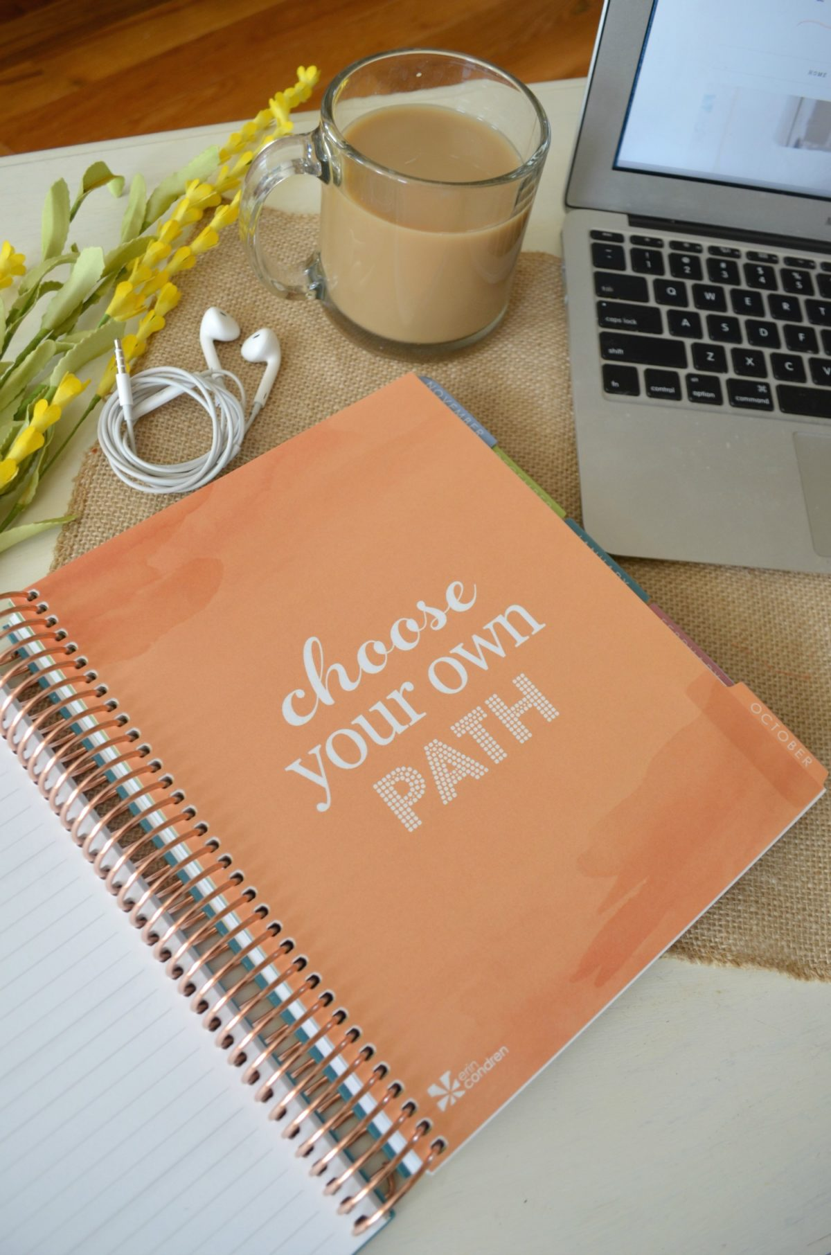 Erin Condren 2017 LifePlanner Review