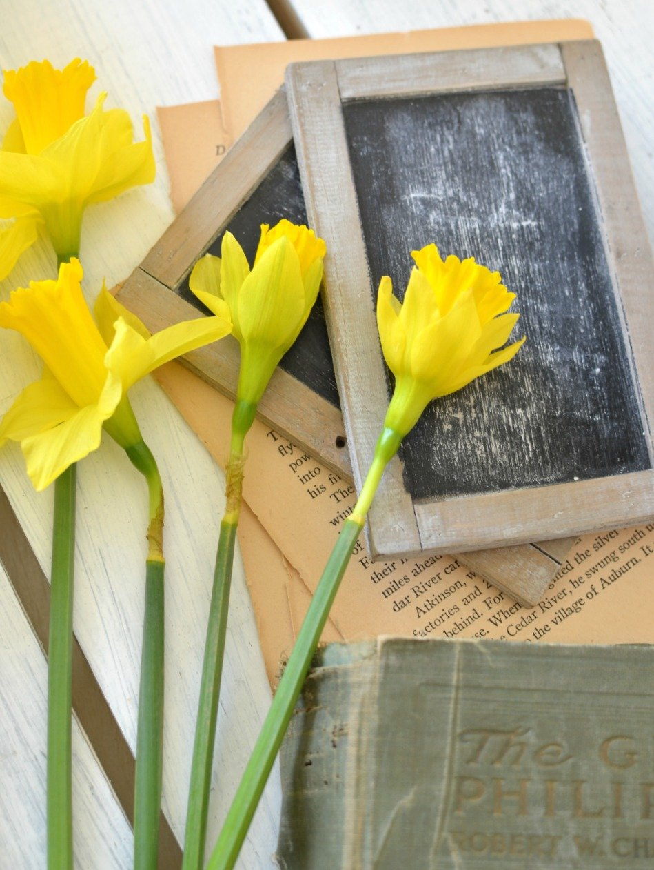 Vintage decor and spring flowers