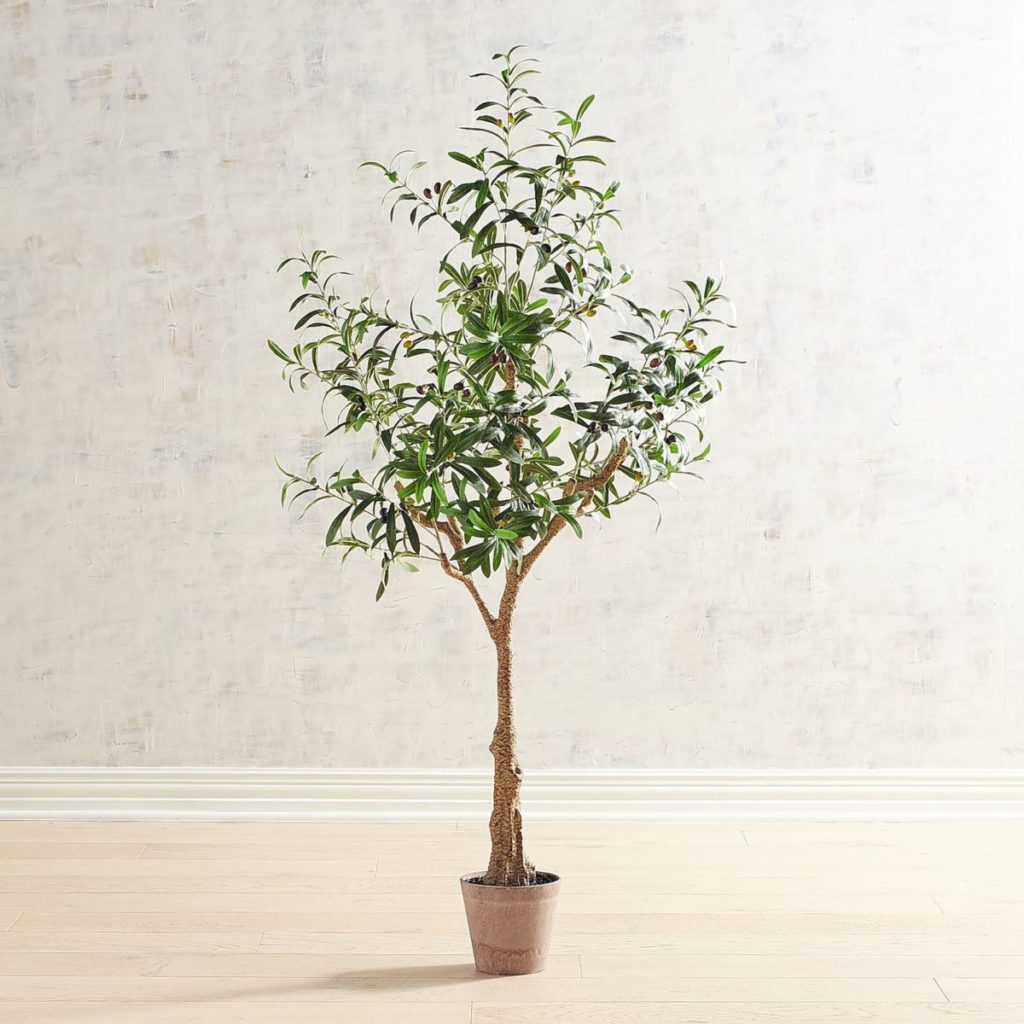 The perfect faux olive tree