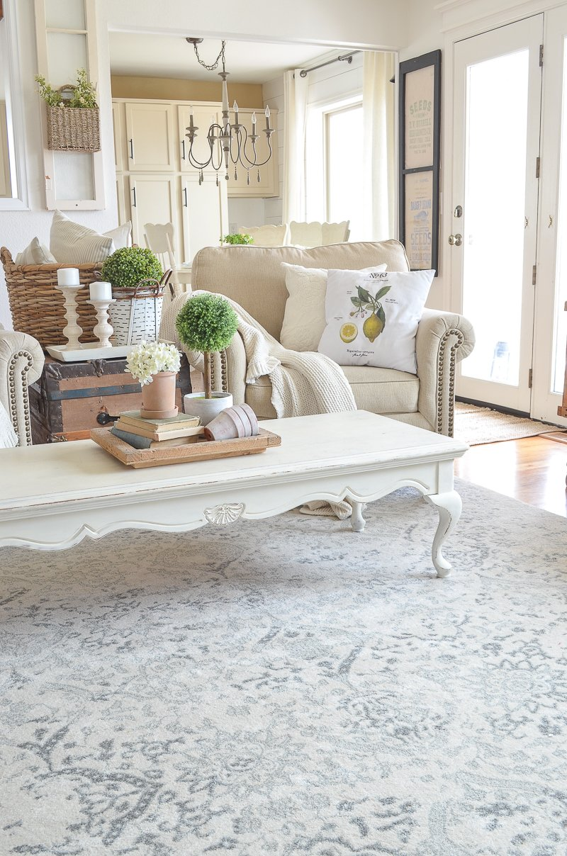 Farmhouse style living room with neutral area rug!