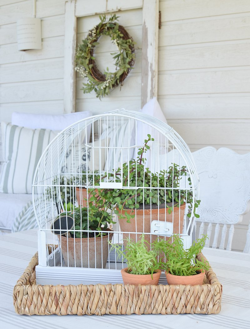 DIY Vintage Bird Cage Planter. Great idea for easy farmhouse style summer garden decor!