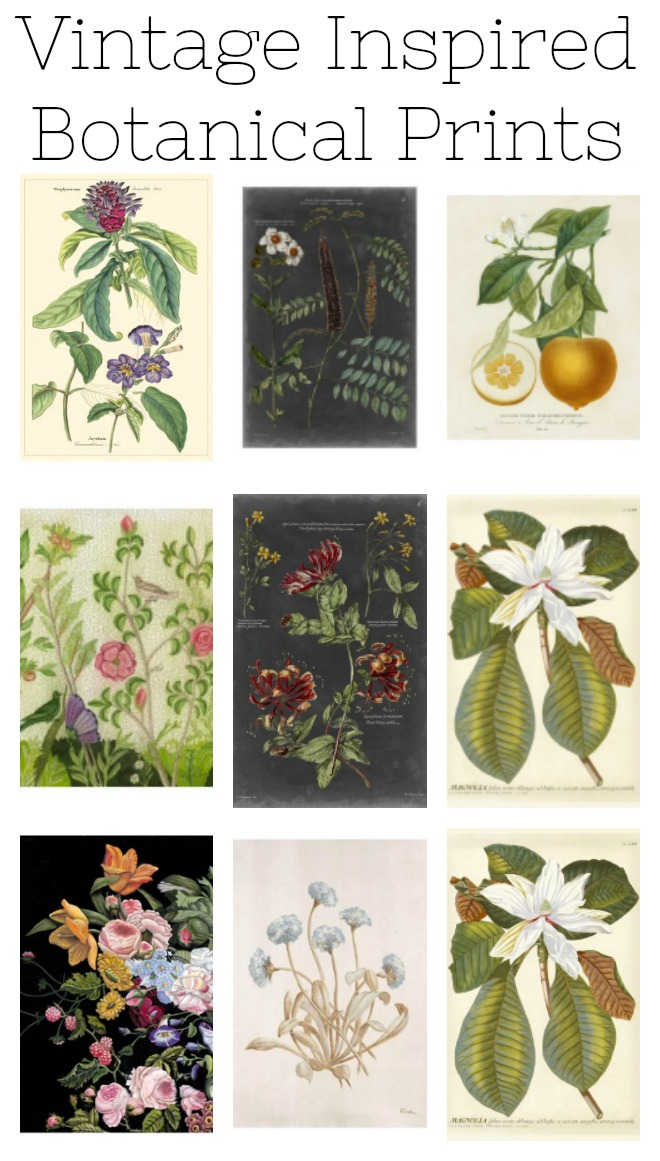 Vintage inspired botanical prints.